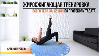 Круговая тренировка на все группы мышц 12 минутная жиросжигающая тренировка среднего уровня