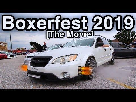 Boxerfest 2019 The Movie