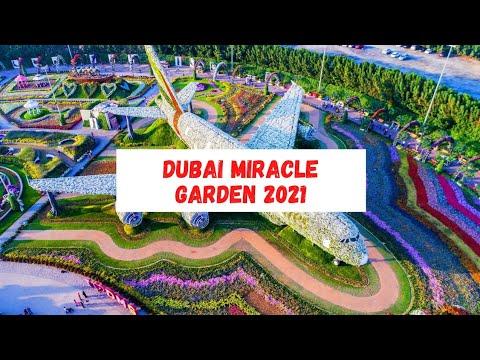 Dubai Miracle Garden 2021 PART – 1  || F4TO creationz ✓