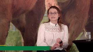 ICBF's Siobhan Ring on the Dairy Beef Index