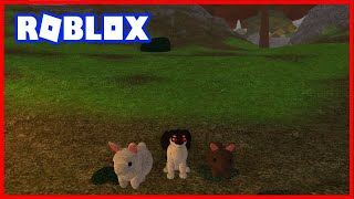 The Wolf's story! (Wolves ' Life 3-Roblox)