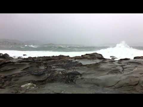 Wild Weather At Terrigal Haven