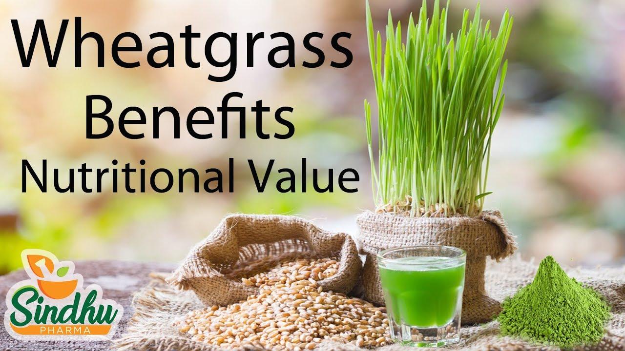 Wheatgrass Nutritional Values