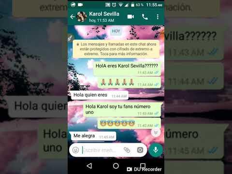 Numero chat karol dance