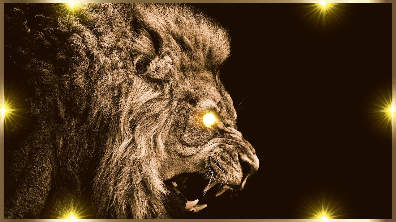Lion - Roar Sound Fx - YouTube - photo#1