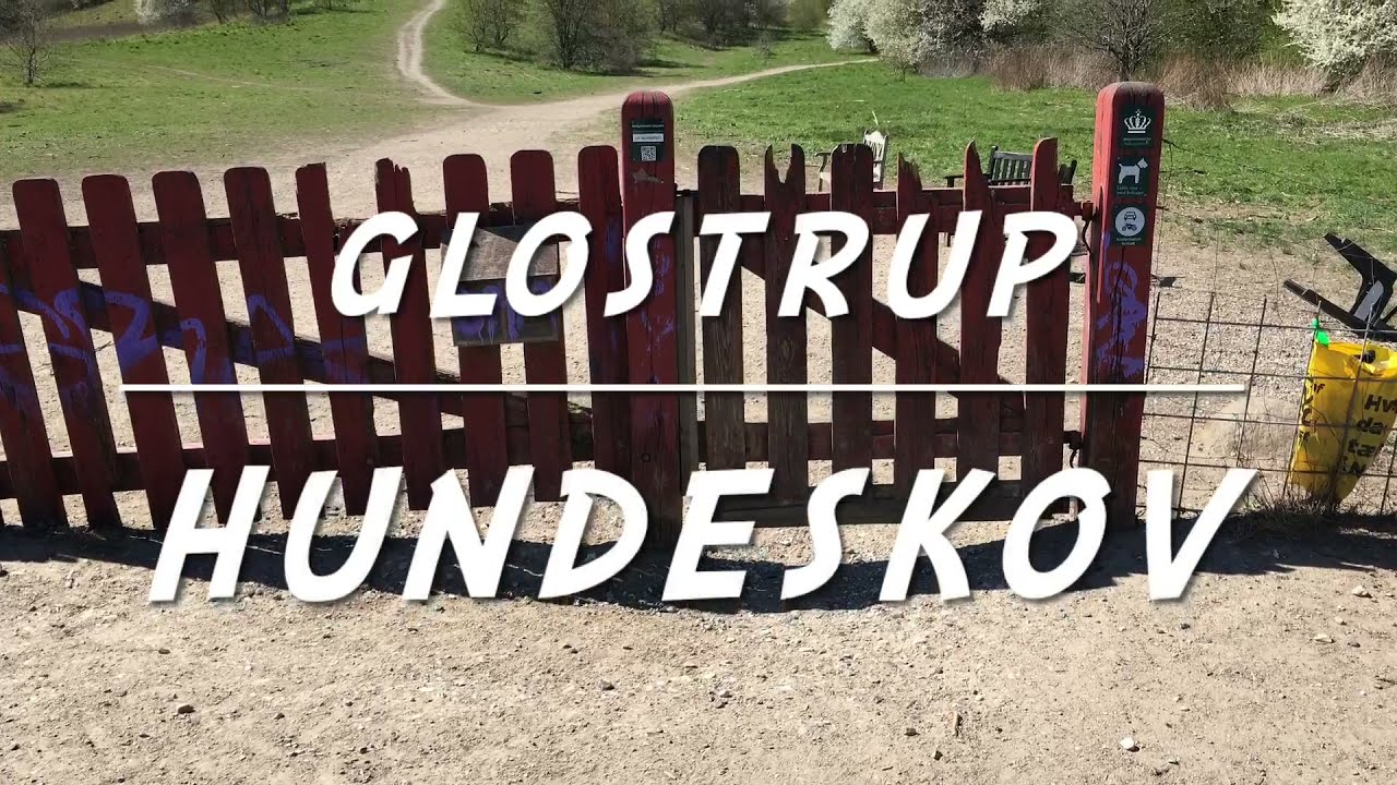 Download Glostrup Hundeskov | Oxbjerget | Vestskoven | Danmark