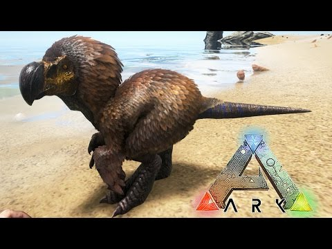 MINI DODOREX!! MINI PERRO, LOBO Y SABLE DE COMBATE!! - MOD ARK: Survival Evolved