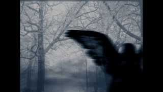 Prurient - You Show Great Spirit