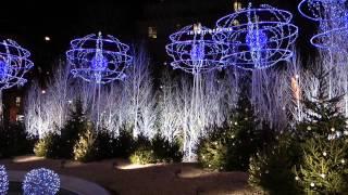 Parigi Natale 2013 illuminazioni Notturne Champs Elysée ,Maddalene,Tour Eiffel 4