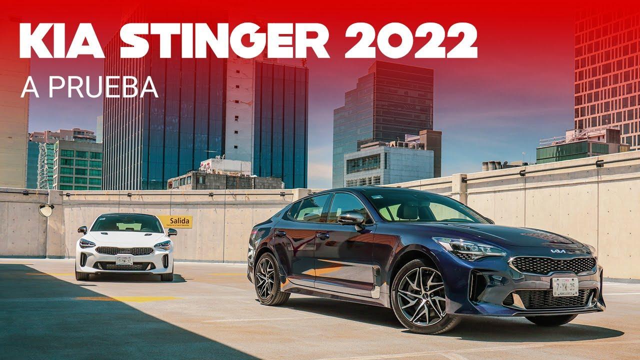 """KIA Stinger GT-Line 2022, a prueba: un nuevo motor """"pequeño"""" a la altura de un fastback imponente"""