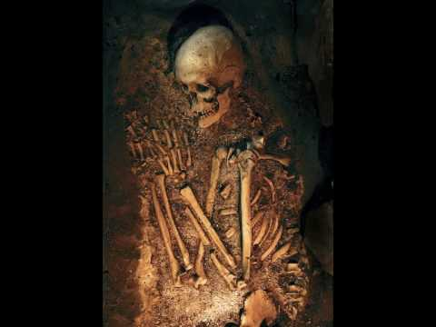 Giants humans skeletons found all over the world