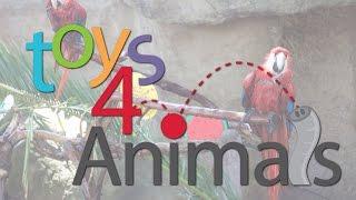 Toys for Animals 2016 - SANTA BARBARA ZOO