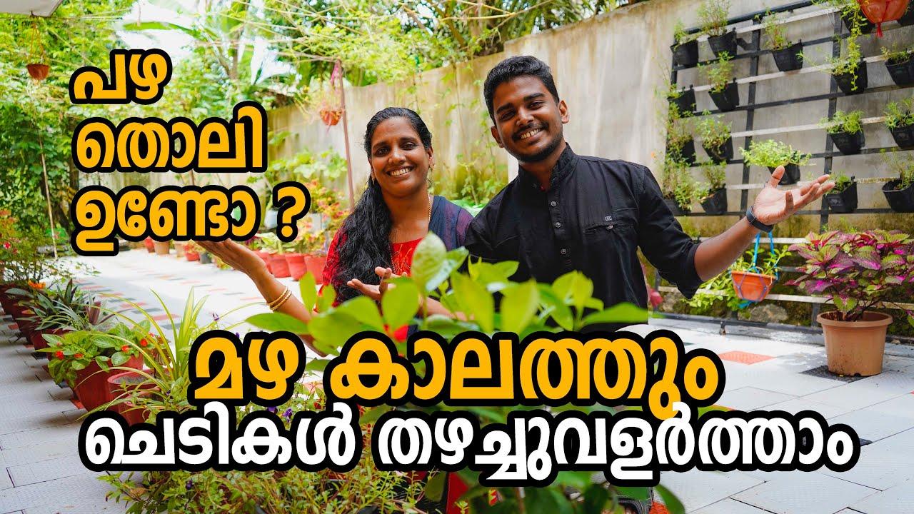 മഴ കാലത്തും ചെടികൾ തഴച്ചുവളർത്താം | Organic Gardening Tips in Malayalam