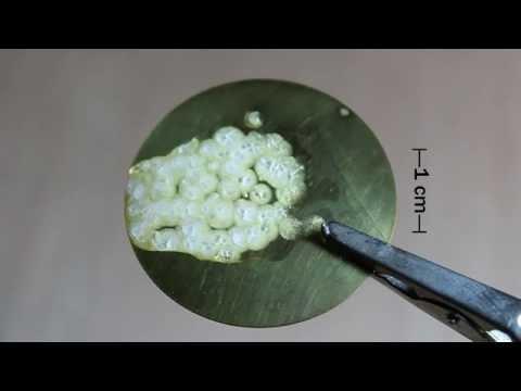 Melting and Crystallization of Poly(Ethylene Glycol) 4000