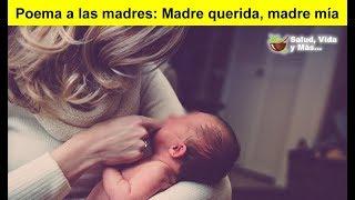 Poema a las madres: Madre Querida, Madre Mía  😍