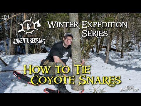 coyote snares how to make