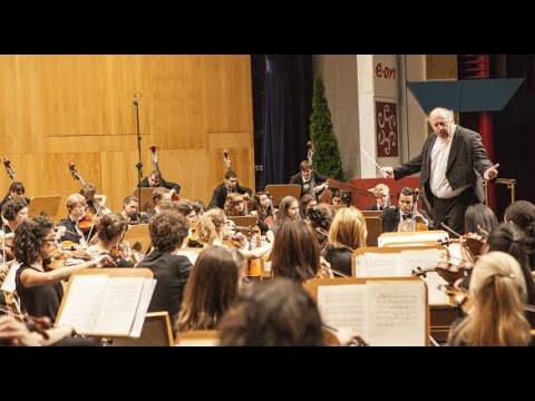 Jean Sibelius - Impromptu for string orchestra