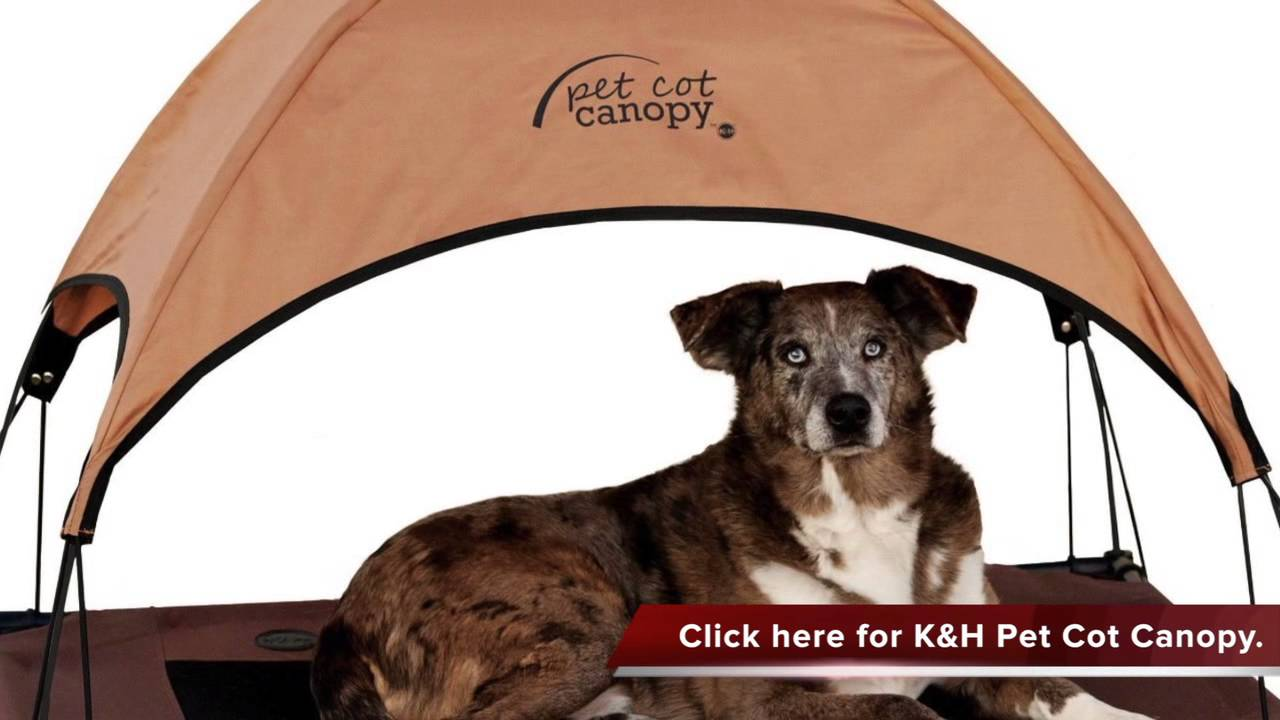Ku0026H Pet Cot Canopy for the Dogs & Ku0026H Pet Cot Canopy for the Dogs - YouTube