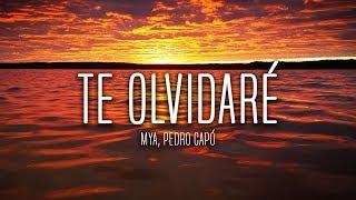 MYA, Pedro Capó - Te Olvidaré (Lyrics / Letra)