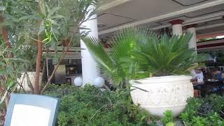 Турция Анталья Hotel Club Sera 5* октябрь 2018 Ресторан у бассейна с морской водой