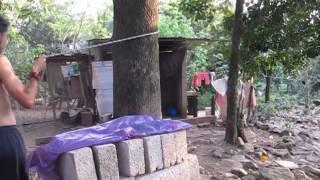 Cómo amarrar la tela aérea de un árbol o estructura