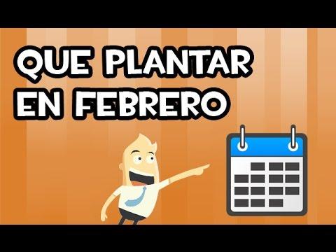 La Huertina De Toni Calendario De Siembra.Que Plantar En Febrero Calendario De Siembra