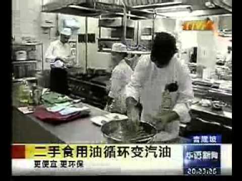 TV2 -- FRIM pemprosesan Biodiesel (Chinese News)
