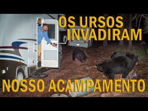 OS URSOS INVADIRAM NOSSO ACAMPAMENTO NO ALASCA! | RICHARD RASMUSSEN