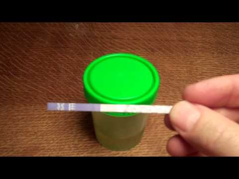 Cannabis Drug Testing- Cannabis THC test strip instructions, detection times & results