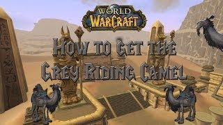 Wow - How to get the Grey Riding Camel - Guide!