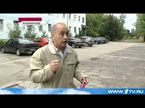Новый  Новости Калининграда