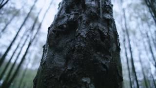 Farris - I samspill med naturen gjennom 100 år