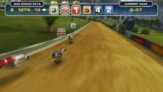 Triple Towers Virtual Greyhound Racing / www.solidicon.com