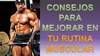 Entrenamiento Muscular - Consejos Entrenamiento Musculacion