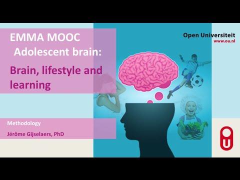 MOOC Adolescent brain Methodology