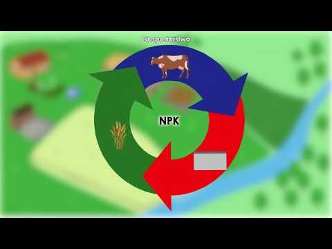 Jak zbilansować obieg azotu w gospodarstwie?