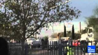 Cat jumps from pole 1 AC09.flv
