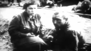 Память о Великой Отечественной войне 1941-1945