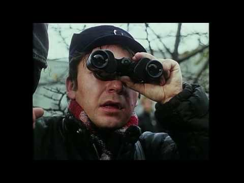 Polish Cinema: A History, Lecture 11 (1990-2004)