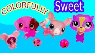 Lps Colorfully Sweet Pink Collection Beagle Puppy Dog Chinchilla Toy Review Cookieswirlc