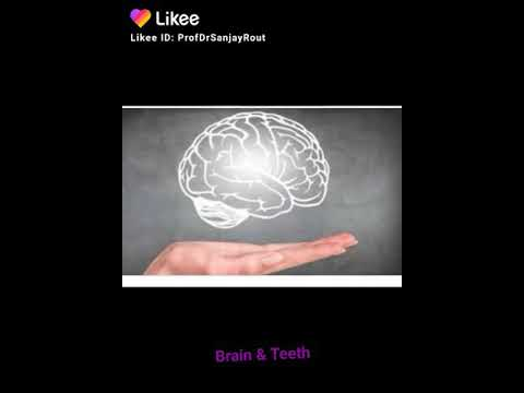 Brain with neurons connecting Your Videos on VIRAL CHOP VIDEOS
