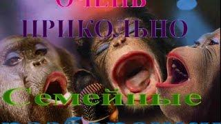 ОЧЕНЬ ПРИКОЛЬНО!.Диалог обезьян.Dialog Affen.Dialogue monkeys