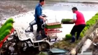 Rice Planting Method Using Modern Tools in Korea