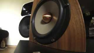 Seas excel bass element playing vinyl Seas W18EX001 excursion