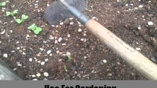 7 Must Have Gardening Tools And Equipment