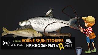 Русская Рыбалка 4 — Стрим. Поиски новых трофеев.