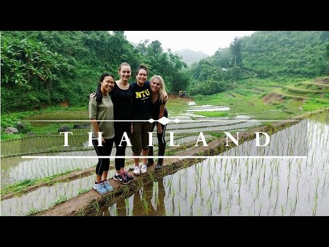 Volunteering in THAILAND 🌏  Challenges Abroad