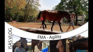 FMA – Horse Agility