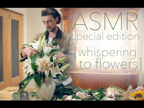 ASMR special edition [whispering to flowers]