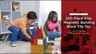 SKY5217 250-Piece Kids STEM 3D Magnetic Building Block Tile Toy Play Set
